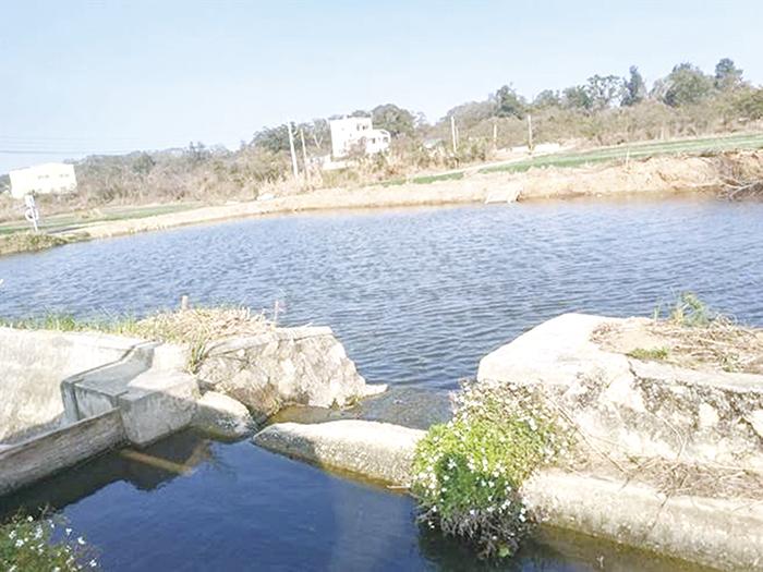 針對地區水資源開發及農塘浚深案相關事項,縣府建設處及工務處分別說明今年上半年執行概況,其中在農塘浚深部分,縣府趕在今年雨季來臨前,已動支相關預算,著手展開浚深作業,期待雨水如期到來時,增加農塘蓄水量,有效紓解農作物大缺水的困境。(本報資料照片/縣府提供)